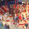 Is Your Resume a 3-Ring Circus?