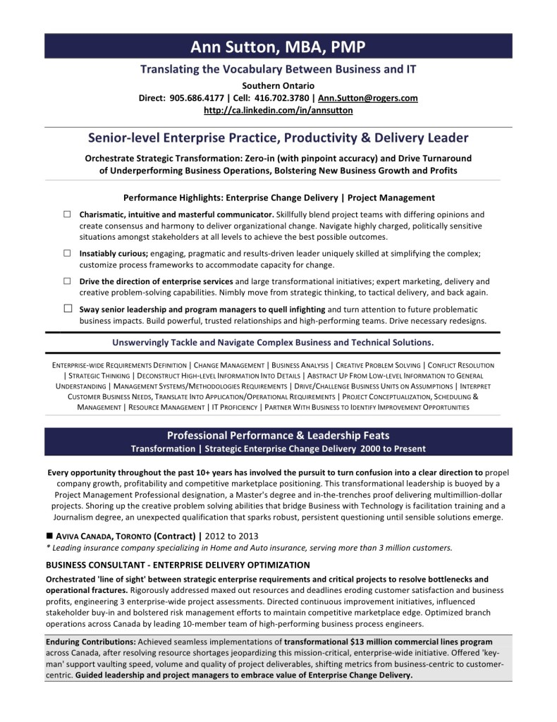 Ann Sutton Resume for Website 790x1024 Executive & Professional Resume Services