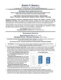 Business-Development-Executive-mini