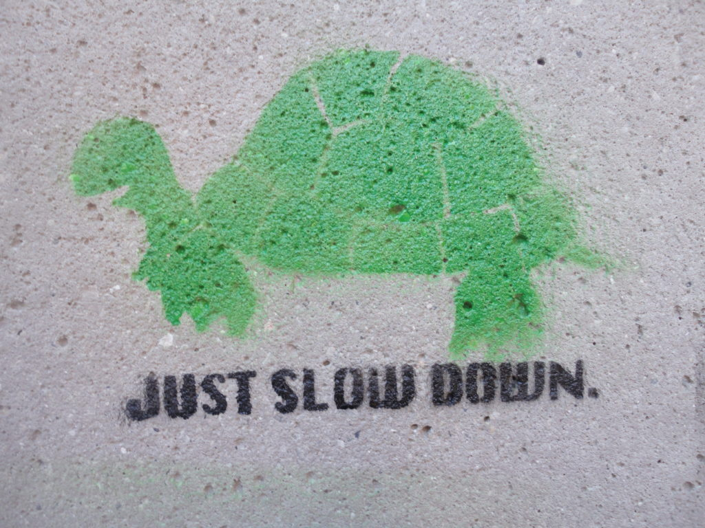 Message to Executive Job Seekers :: Just Slow Down