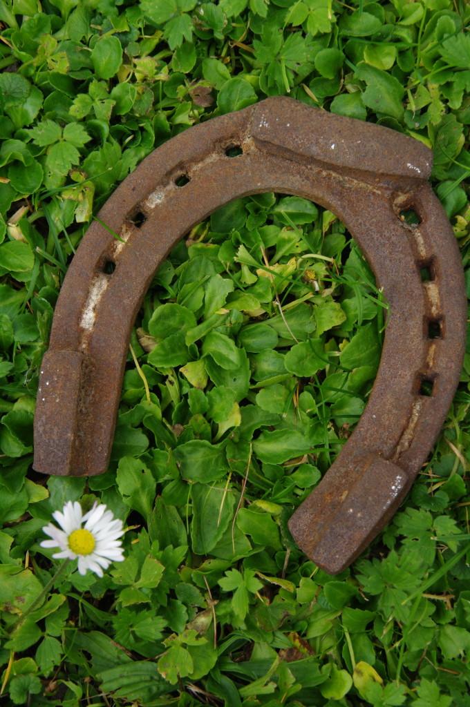подкова horseshoe бесплатно